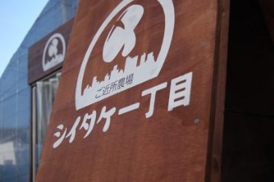 店舗デザイン・ブランディング一式(シイタケ一丁目様)